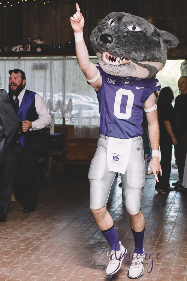 willie the wildcat at wedding reception