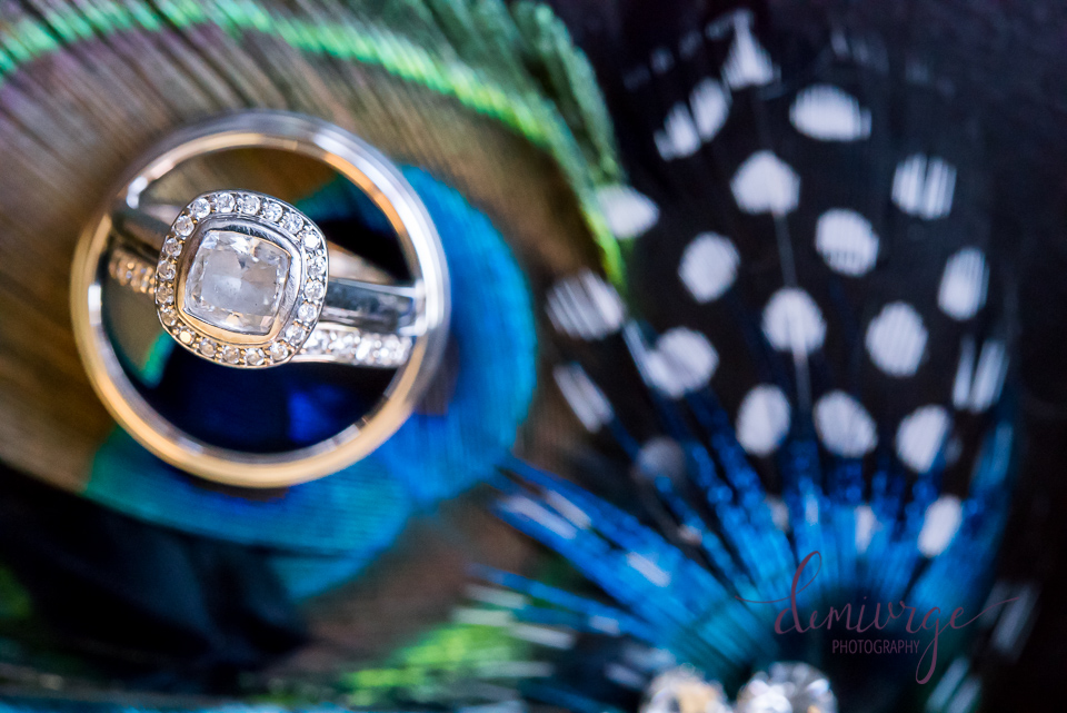 wedding rings on peacock feather
