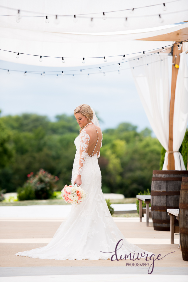 stunning bridal portrait chrisman manor